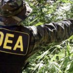 DEA Chief Chuck 'Medical Marijuana Is A Joke' Rosenberg Is Resigning