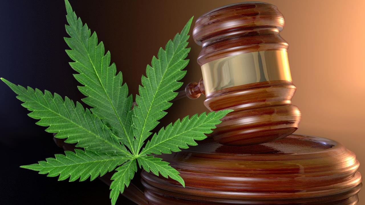 Marijuana Scheduling Faces Tough Legal Challenge in Florida Courtroom