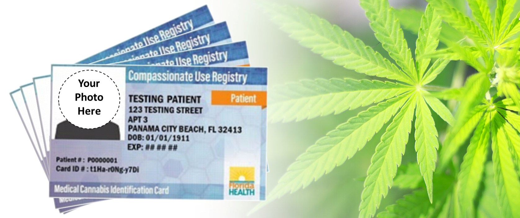 Officials Sign Deal to Outsource Florida MMJ ID Cards
