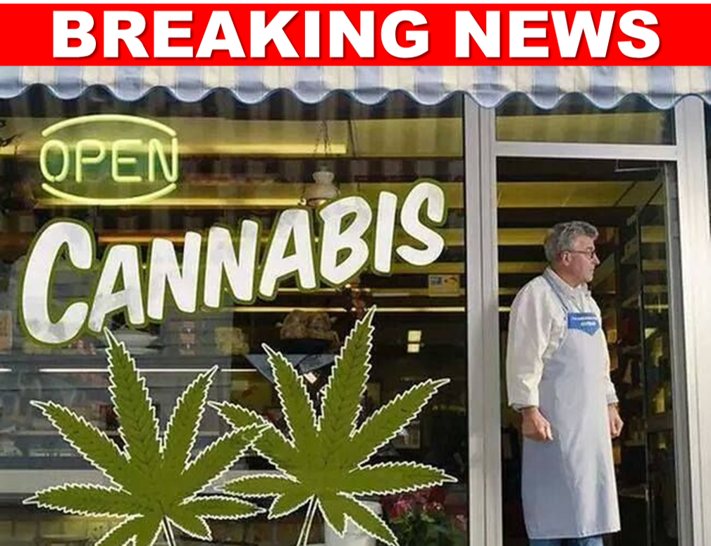 BREAKING: Is It About to Get Easier to Open a Marijuana Business in Florida?