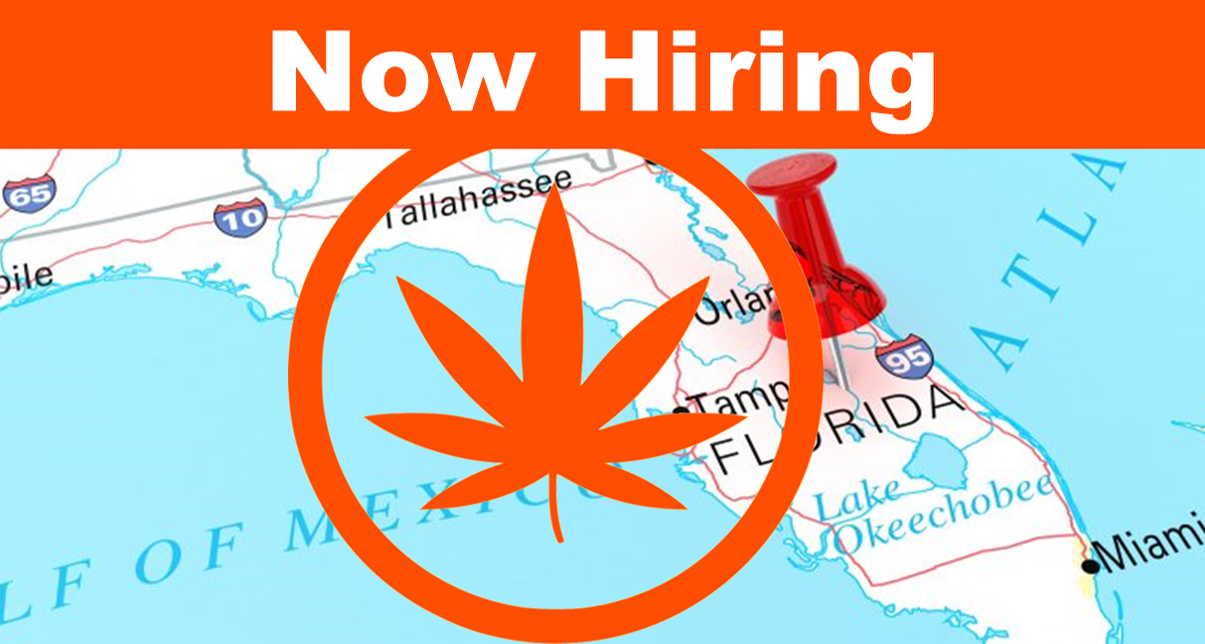 Florida Cities Among Top 10 for Marijuana Jobs