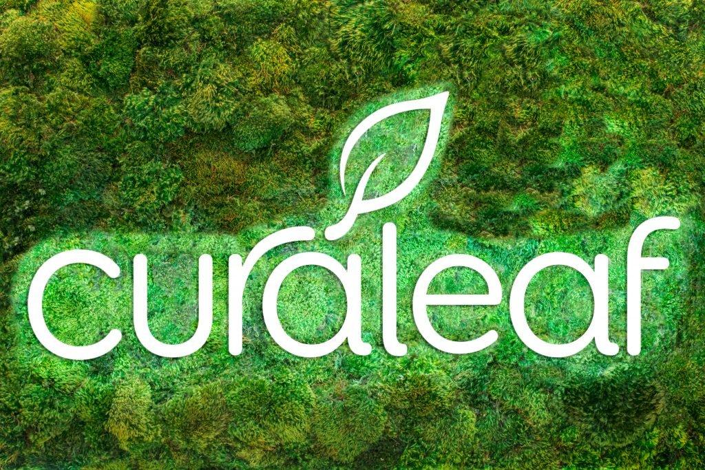 Moss_Wall_new_logo_edit-1-1024x683