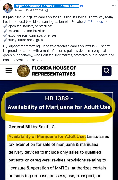 Rep. Carlos Guillermo Smith, an Orlando Democrat, filed his bill to legalize cannabis late Monday